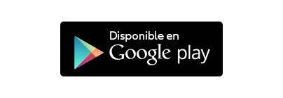 google (1)
